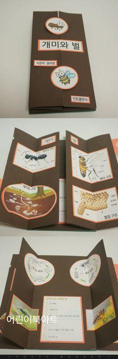 어린이북아트 프렌치도어 응용 개미와 벌 비교