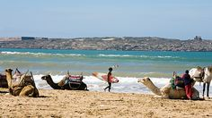 North African Beaches | Essaouira, Morocco - Beaches & Oceans - MensJournal.com