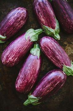Eggplants by Emma Galloway
