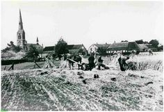 Ommel.....koren oogst.....foto vanuit de Kennisstraat....dank je wel Frans Vereijken.