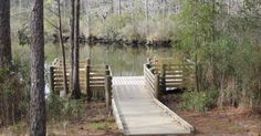 Graham Creek Nature Preserve in Foley, Al