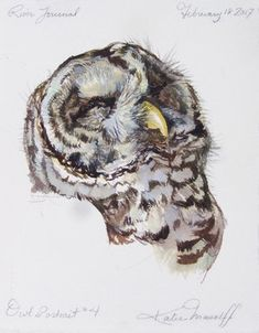 ACEO Great Horned Owl Bird Art PRINT of Painting VERN
