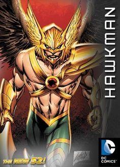 HAWK MAN