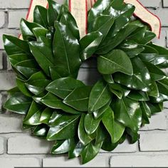 Of course every Southern Girl figures out a way to include Magnolia leaves in her Christmas decor!  So when I found this wreath form from the Dollar Tree, I kne…