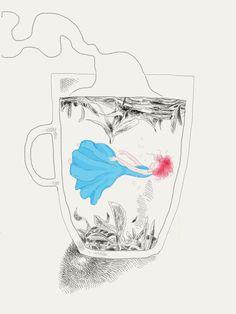 """Voici quelques-uns des essais ayant abouti aux illustrations du livre d'Emmanuelle Jay : """"Plus long le chat dans la brume"""""""