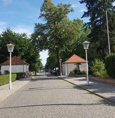 Schlosspark #Pankow ein schöner Ort für ein Familienpicknick. #mamablogger_de #Berlin #germanblogger #mommyblogger_de #igersberlin