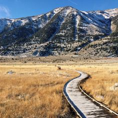 The chosen path #monolake #boardwalk #snow #mountains #path