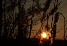 Photo taken with Canon EOS 600D - Random - YouPic