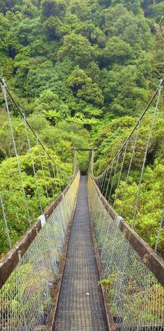 Motu Falls, Big Swinging Suspension Bridge, Gisborne, North Island
