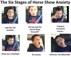 lol this is so on point  www.thewarmbloodhorse.com