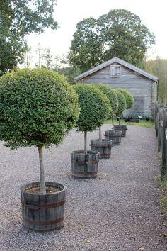 Дом, который Ларс Встроенный .: Gunillaberg, Швеция Часть 1: