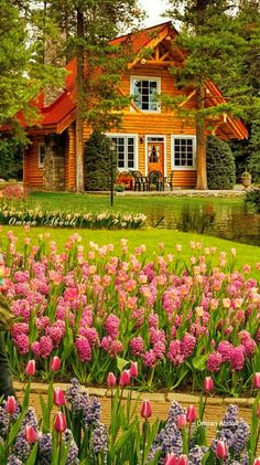Gardens Discover It& a beautiful world Cottage Art Cottage Design Cozy Cottage Cottage Homes Garden Cottage Beautiful Flowers Garden Beautiful Gardens Beautiful World Beautiful Homes Cottage Art, Cottage Design, Cozy Cottage, Cottage Homes, Garden Cottage, Cabin Homes, Log Homes, Beautiful Nature Pictures, Beautiful Nature Wallpaper