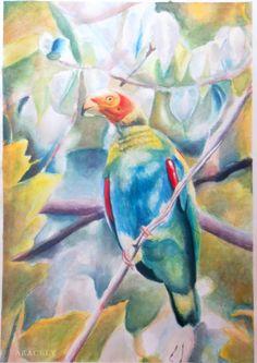 Loro con #acuarelas realice un paso a paso para pintar este lorito, no es tan complejo como parece #watercolors.