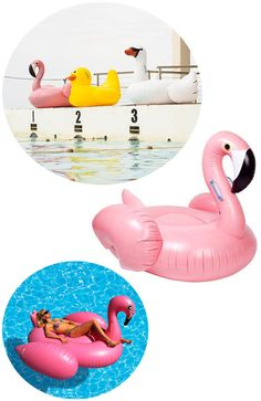 giant inflatable flamingo pool float...yes! | kelly golightly
