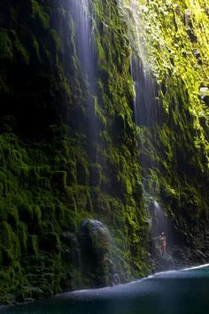 So I basically want to experience every part of Hawaii but the waterfalls would be a magical site I think :)