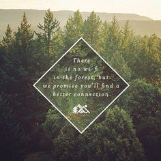 """""""There is no wi-fi in the forest, but we promise you'll find a better connection."""" In need of a digital vacation in the woods! Good Quotes, Me Quotes, Inspirational Quotes, Pagan Quotes, Fall Quotes, Peace Quotes, Random Quotes, Good Vibe, Nature Quotes"""