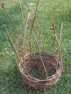 Weaving grapevine baskets