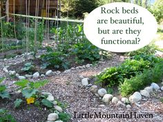 rock bed design.  rock beds are beautiful but are they functional?
