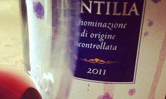 tintilia-vino-molise