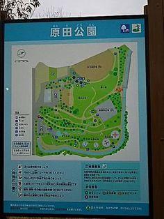 里親さんブログ二次感染膿皮症と節分 - http://iyaiya.jp/cat/archives/81145