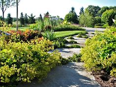 7 Landscaping ideas... using landscaping in your design