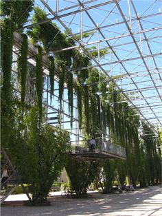 What is good planting design? (3) -Ecotechnology - MFO Park in Zurich, Switzerland, where steel architectural supports and cables are designed to be shrouded in vines and climbers - This is the converging future of landscape and architecture