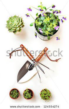 #Gardening #Tools #spring
