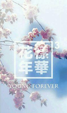 Fond d'écran BTS avec fleur printanière. ♡ love it
