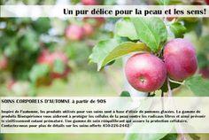 De la tête aux pommes ... Pour connaitre les soins offerts, informez-vous auprès de l'une de nos réceptionnistes entre 9am et 7pm.