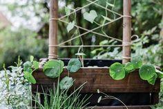 Holzkisten Bepflanzen + DIY Rankgitter