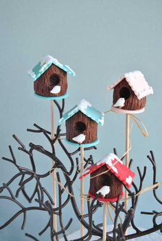 Bird house cake pops - AMAZING!