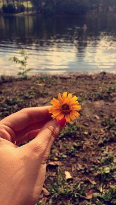 Natureza 🌻🌻🌻🌻