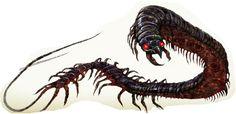 https://guildberkeley.files.wordpress.com/2013/07/whiptail-centipede.png