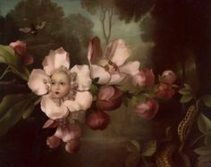 """""""You can learn a lot of things from the flowers"""" Sleepless Blossom by Stephen Mackey"""