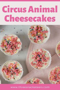 This yummy Frosted Circus Animal Cheesecake is a perfect homemade dessert for a birthday party, baby shower or even a holiday like Valentine's or Easter. The buttery pink cookie crust topped with soft creamy filling is perfection! Fruity Pebble Cheesecake, Mini Cheesecake Recipes, Classic Cheesecake, Cheesecake Cookies, Animal Cookies Recipe, Pink Cookies, Recipe Steps, Mini Cheesecakes, Homemade Desserts