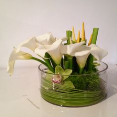Send Something Calla This Way Comes in Los Angeles, CA from LA Premier, the best florist in Los Angeles. All flowers are hand delivered and same day delivery may be available. Exotic Flowers, Faux Flowers, Tropical Flowers, Small Flowers, Beautiful Flowers, Cactus Flower, Summer Flowers, Purple Flowers, Tropical Flower Arrangements