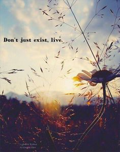 Don't just exist, live.