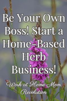 Be Your Own Boss! Start a Home-Based Herb Business! / Work at Home Mom Revolution
