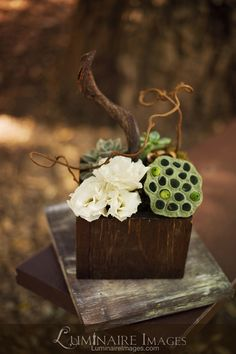 Woodsy floral arrangement, textures with color groupings, understated and still interesting. Floral Centerpieces, Table Centerpieces, Protea Centerpiece, Floral Arrangements, Table Decorations, Woodsy Wedding, Floral Wedding, Wedding Flowers, Floral Design