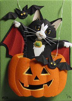 Cat in Pumpkin ~ Matthew Ross @papermatthew.com