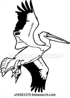 Clip Art American White Pelican Fotosearch Search Clipart