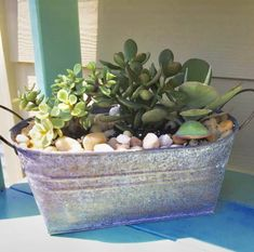 Container Plants for Full Sun Beautiful plants for containers that love full sun. Add these varieties of plants and flowers to your hanging baskets, window boxes, and containers in sunny areas and enjoy blooms all summer Full Sun Container Plants, Container Herb Garden, Full Sun Plants, Container Gardening Vegetables, Succulents In Containers, Container Flowers, Succulents Garden, Vegetable Gardening, Box Garden