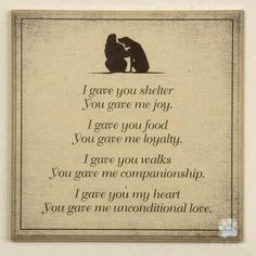 I love dogs :) that unconditional love I Love Dogs, Puppy Love, Cute Dogs, Schnauzers, Game Mode, Pet Loss Grief, Motivacional Quotes, Unconditional Love, Rainbow Bridge