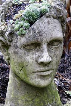 Gotta admit; am into the whole plants as brains idea for the garden. Symbolic, deep, and smile-inspiring.