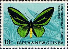Papua New Guinea 1966 Butterflies SG 86 Fine Mint Scott 213 Other Papua Stamps HERE