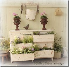 RECYCLED DRESSER = FABULOUS PLANTER     More a repurposed dresser rather than a refurbished dresser, this inexpensive shabby chic piece of recycled furniture becomes a lovely crown jewel in a sun room or romantic garden.  Great idea for my friend Linda!