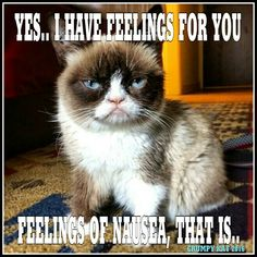 Another Grumpy Cat meme by the other Grumpy Kat 2016 Grumpy Cat has feelings (Edited - I decided I didn't like the colors or font of the 1st one I did so I changed both)