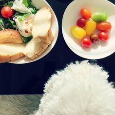 """좋아요 80개, 댓글 11개 - Instagram의 ♥️(@semikok)님: """"🍽🥗 #beHealthy 🥗🍽 귀찮아도 끼니를 챙겨먹도록 합시다 🧡 . #goodmorning 🌞"""" Eggs, Breakfast, Food, Morning Coffee, Essen, Egg, Meals, Yemek, Egg As Food"""