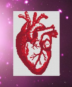 Anatomy cross stitch PDF pattern It measures 6.43 x 9.00 • Image for reference • A black and white PDF pattern • DMC Colour list • Full Instructions with diagrams • Usually emailed within 2-3 hours (Please allow up to 24 hours for delivery but if you havent received your PDF within