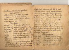 Ocalić od zapomnienia: o pewnym zeszycie i jego autorce. White Plates, Ale, Cooking Recipes, Food, Kitchen, Old Recipes, Author, Diet, Cooking